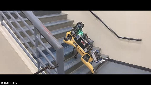 TheDefense Advanced Research Projects Agency hosted a competition for autonomous search and rescue robots it hopes will eventually be of use in military operations
