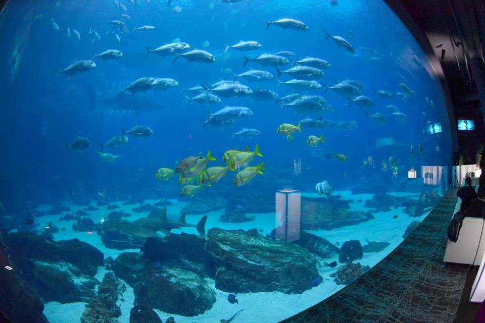 Gunna Drip or Drown 2 ″A Listening Experience″