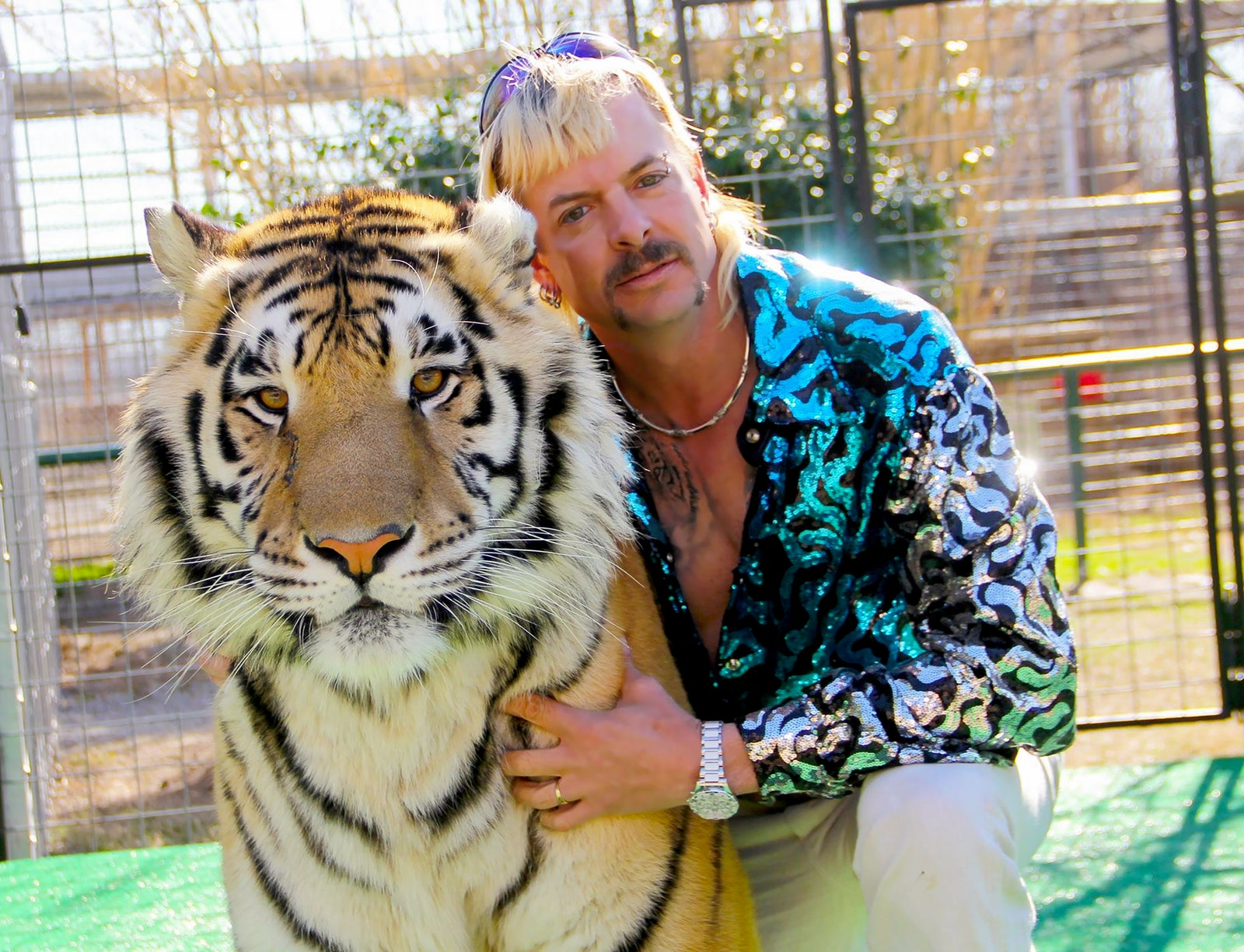 Tiger King Is Officially the Queerest Show on TV